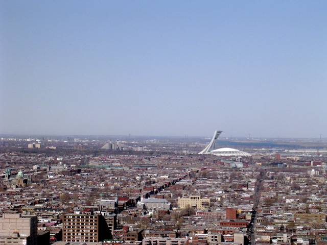 skyline-view-from-the-top-of-mount-royal.png#asset:31239