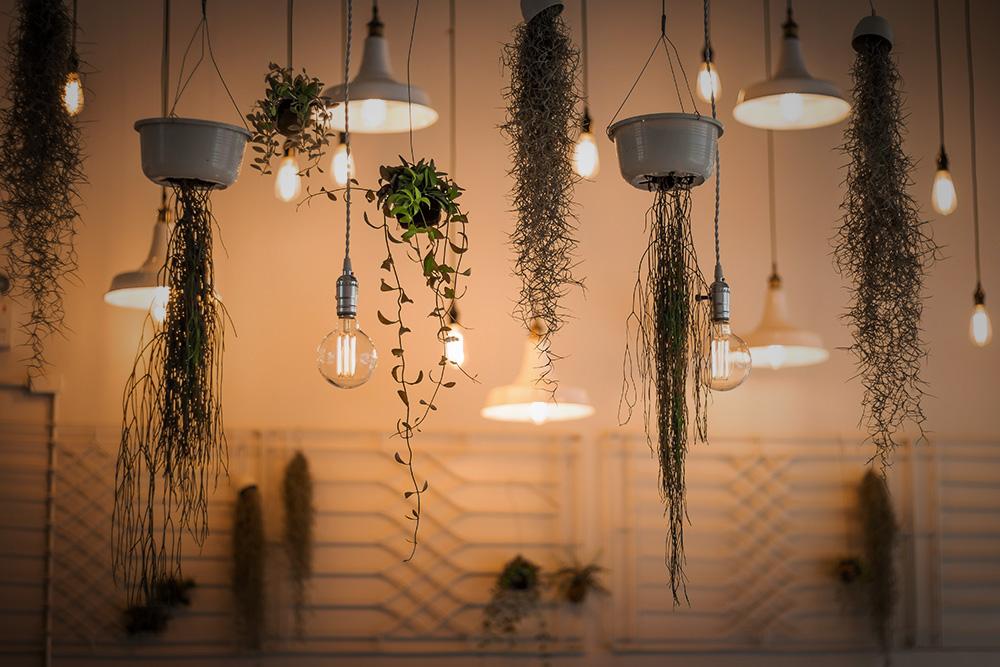3-lampe-plafonniers.jpg